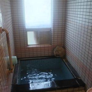 ペット可の温泉旅館☆お部屋付き温泉がついているところがオススメです